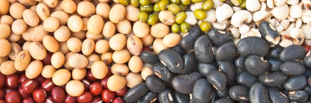 Why You Should Become a Bean-Eating Machine