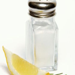 A salt shaker and a slice of lemon against a white background