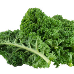 Kale close up on white background