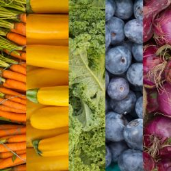 popular fruits and vegetables colorfully displayed in a rainbow themed collage