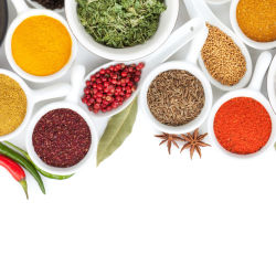 A collection of spices on an isolated white background