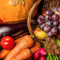 The thanksgiving dilemma how to portion control 250x250