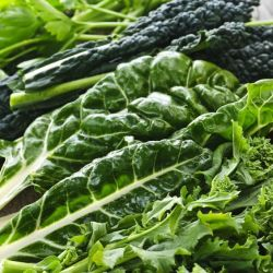 Top 5 nutrient dense vegetables 250x250