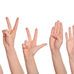 Hands counting from one to five on fingers, isolated on white background